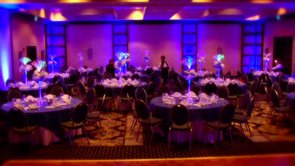 Mitzvah Decor @ Hilton Washington DC North/Gaithersburg